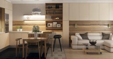Дизайн кухни-гостиной 25 кв. м.